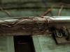 vines_creep_on_track